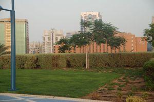 mon hotel a gauche du Sheraton
